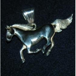 sa-horse2